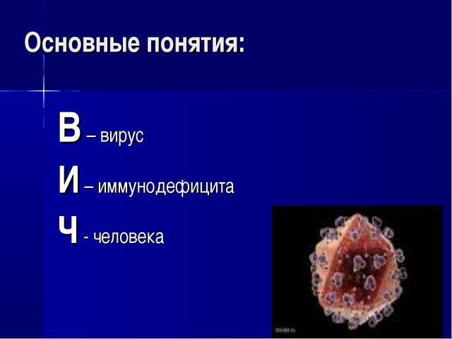 Основные понятия: В – вирус И – иммунодефицита Ч - человека