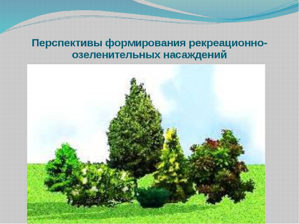 Перспективы формирования рекреационно-озеленительных насаждений