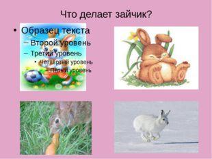 Что делает зайчик?