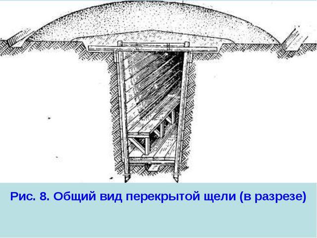 Рис. 8. Общий вид перекрытой щели (в разрезе)