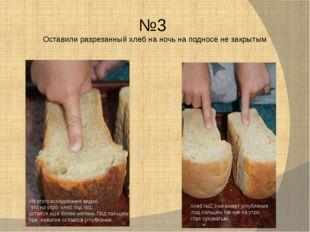 №3 Оставили разрезанный хлеб на ночь на подносе не закрытым Из этого иследова