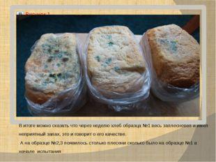 В итоге можно сказать что через неделю хлеб образца №1 весь заплесневел и име