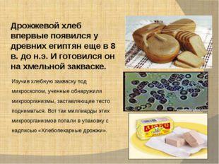 Дрожжевой хлеб впервые появился у древних египтян еще в 8 в. до н.э. И готови