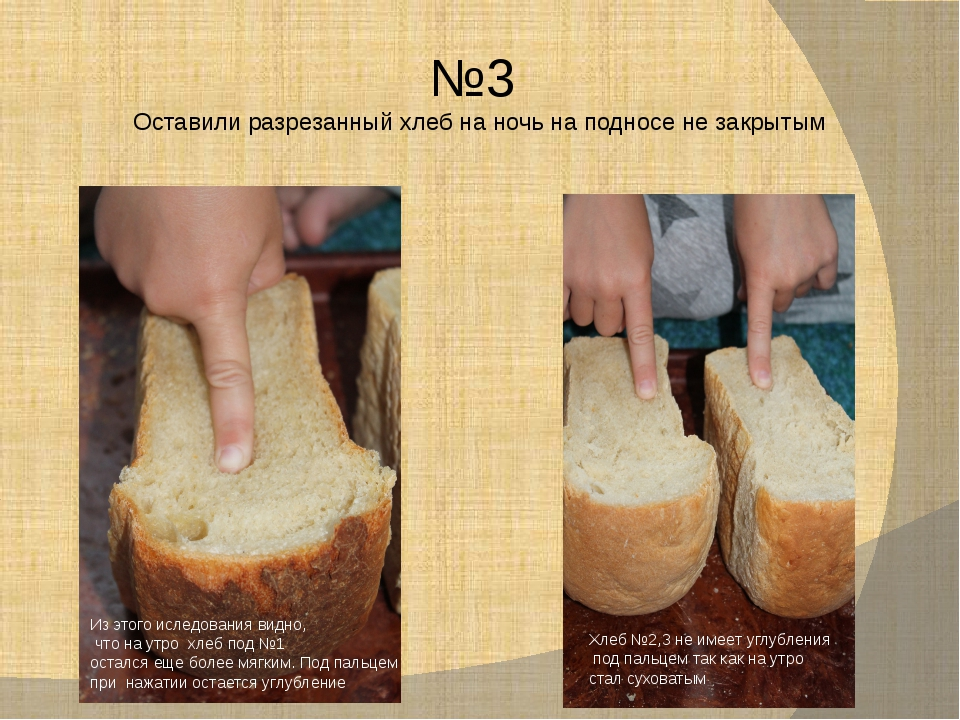 №3 Оставили разрезанный хлеб на ночь на подносе не закрытым Из этого иследова...