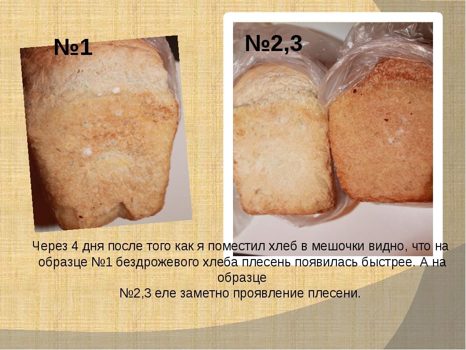 №1 №2,3 Через 4 дня после того как я поместил хлеб в мешочки видно, что на об...