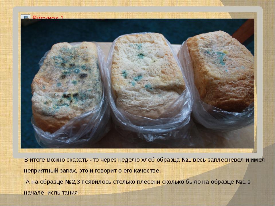 В итоге можно сказать что через неделю хлеб образца №1 весь заплесневел и име...