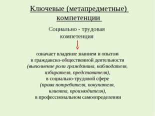 Ключевые (метапредметные) компетенции означает владение знанием и опытом в гр
