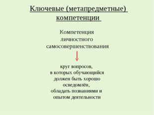 Ключевые (метапредметные) компетенции круг вопросов, в которых обучающийся до