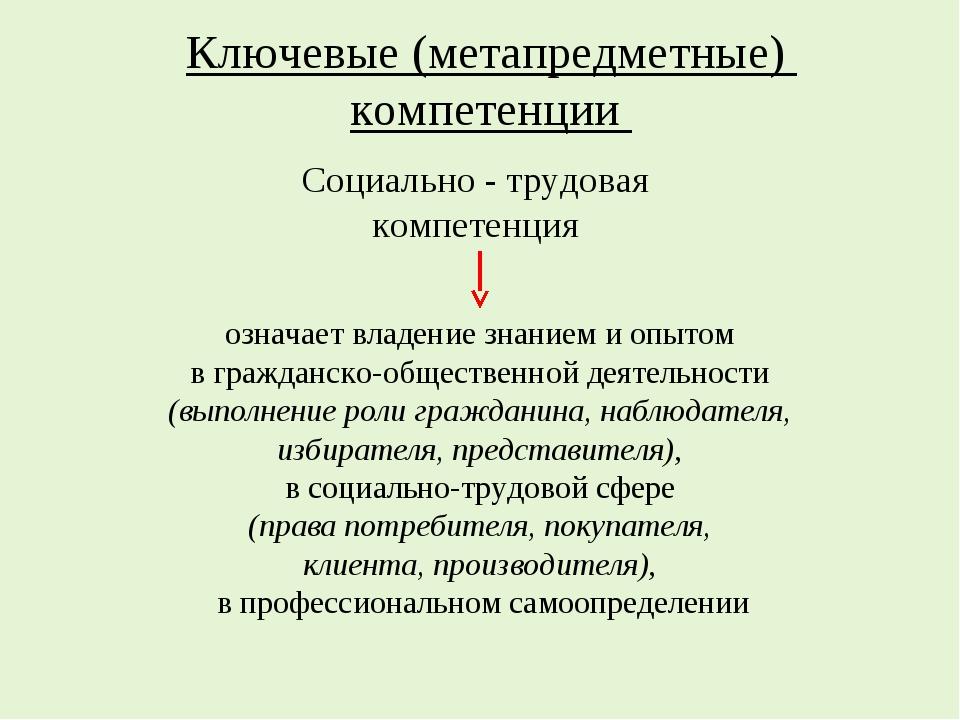 Ключевые (метапредметные) компетенции означает владение знанием и опытом в гр...