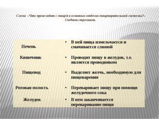 Схема «Что происходит с пищей в основных отделах пищеварительной системы?» С