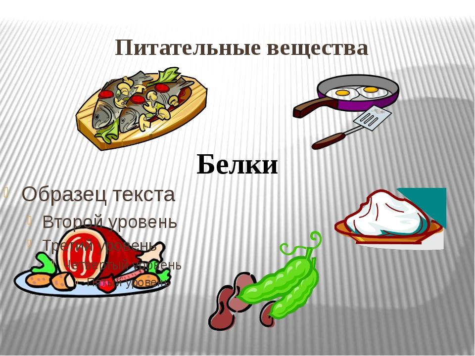 Питательные вещества Белки