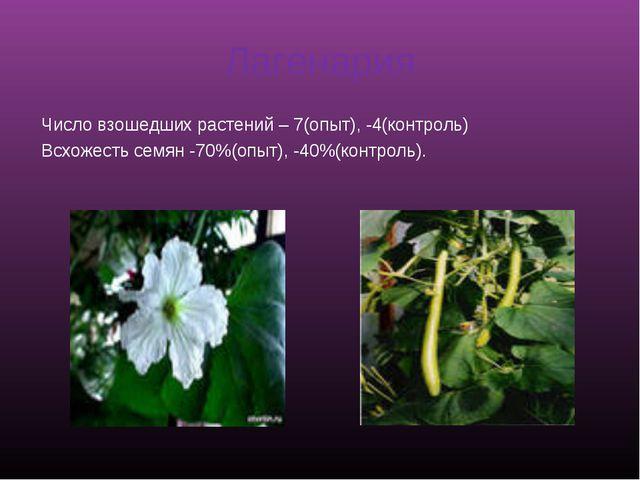 Лагенария Число взошедших растений – 7(опыт), -4(контроль) Всхожесть семян -7...