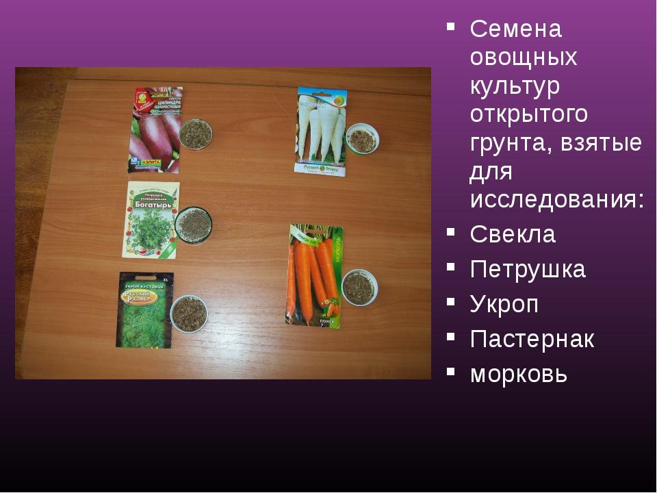 Семена овощных культур открытого грунта, взятые для исследования: Свекла Петр...