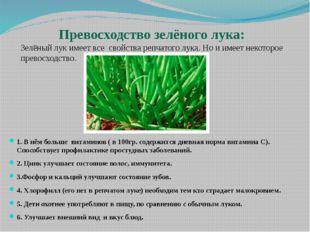 Превосходство зелёного лука: Зелёный лук имеет все свойства репчатого лука.