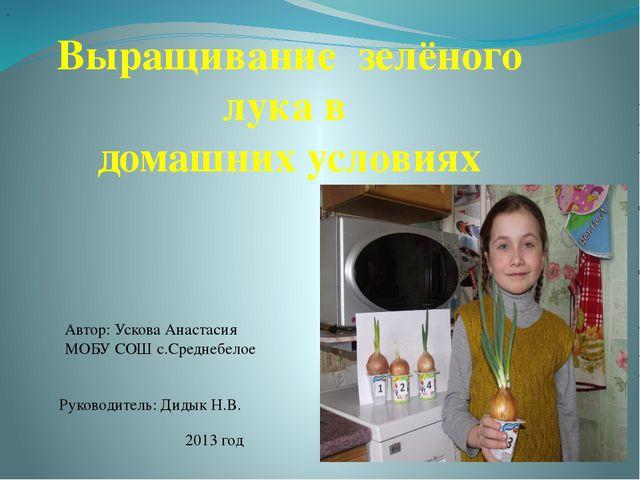 Выращивание зелёного лука в домашних условиях Автор: Ускова Анастасия МОБУ С...