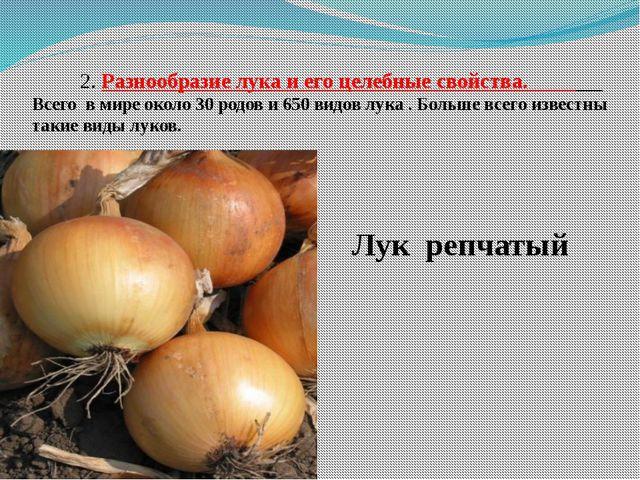 2. Разнообразие лука и его целебные свойства. Всего в мире около 30 родов и...