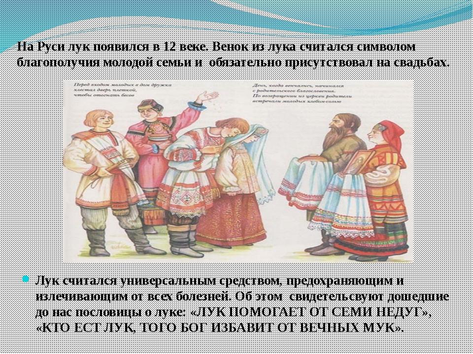 На Руси лук появился в 12 веке. Венок из лука считался символом благополучия...