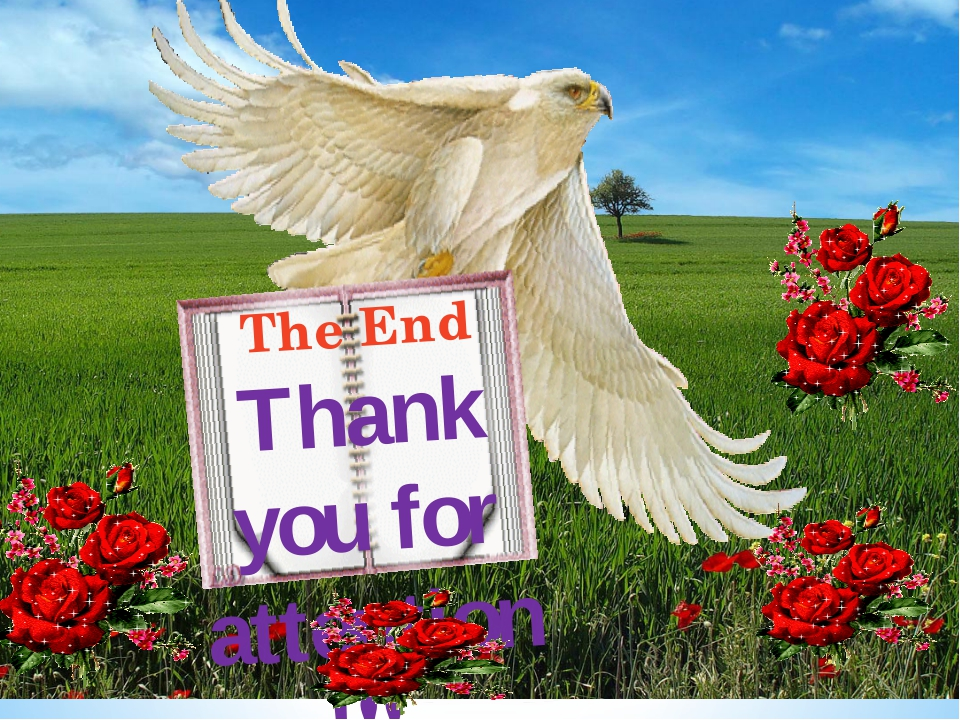 The End Thank you for attention!!!
