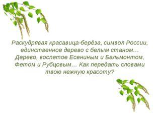 Раскудрявая красавица-берёза, символ России, единственное дерево с белым стан