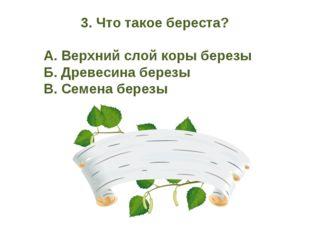 3. Что такое береста? А. Верхний слой коры березы Б. Древесина березы В. С