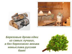 Березовые дрова одни из самых лучших, а без березового веника немыслима русск