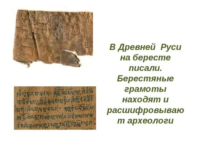 В Древней Руси на бересте писали. Берестяные грамоты находят и расшифровывают...