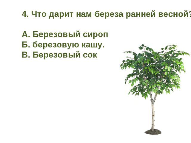 4. Что дарит нам береза ранней весной? А. Березовый сироп Б. березовую кашу....