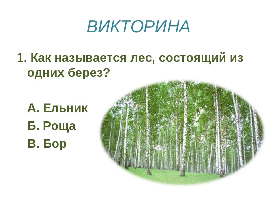 ВИКТОРИНА 1. Как называется лес, состоящий из одних берез? А. Ельник Б. Рощ...