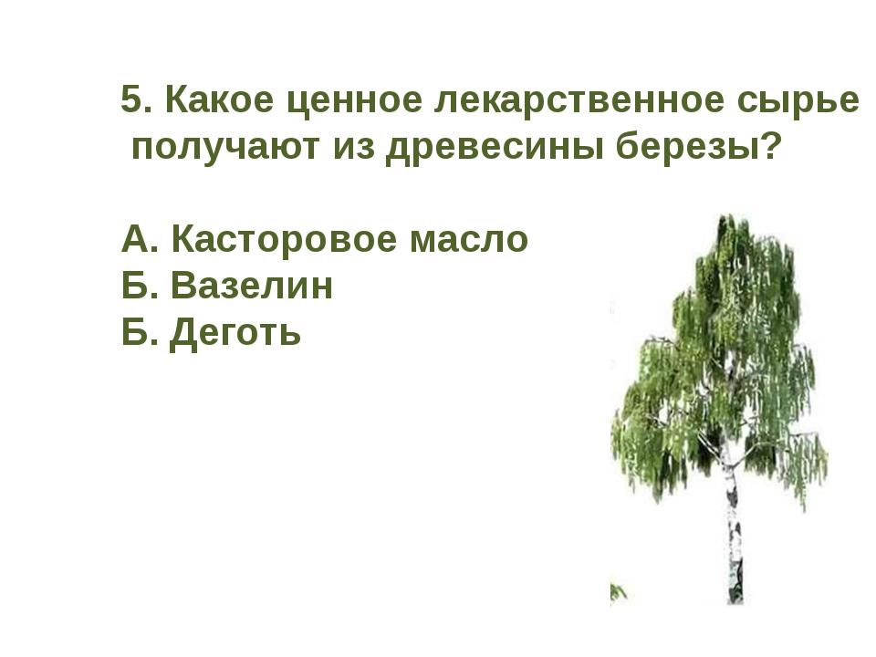 5. Какое ценное лекарственное сырье получают из древесины березы? А. Касторов...