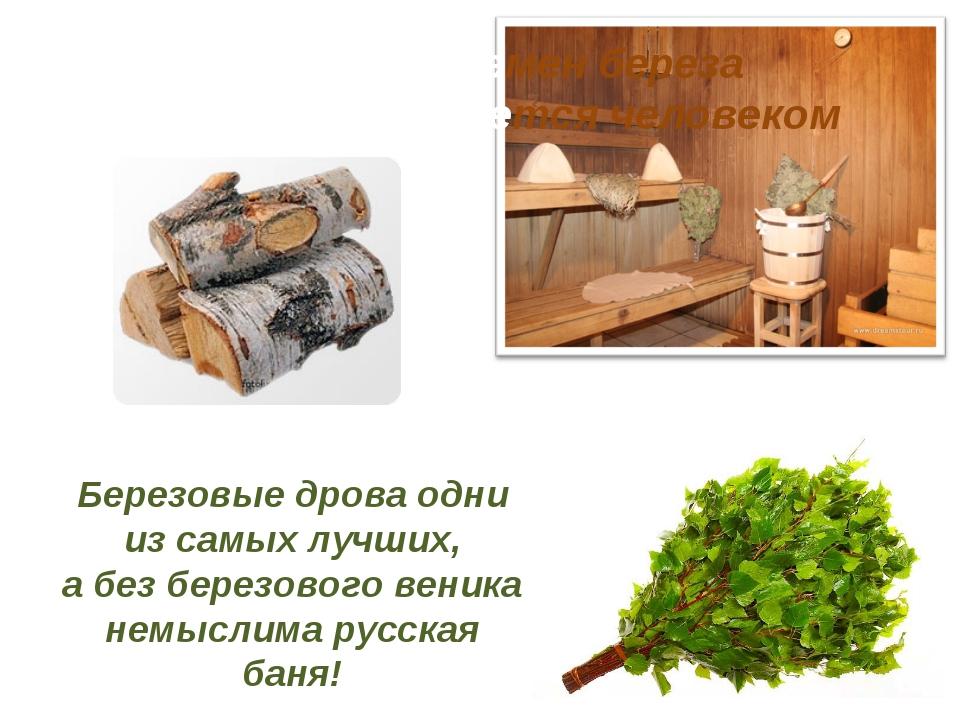 Березовые дрова одни из самых лучших, а без березового веника немыслима русск...