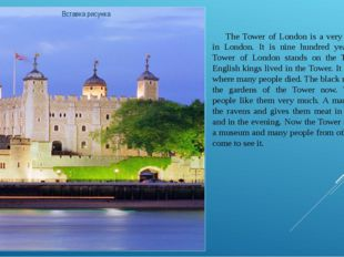 The Tower of London is a very old building in London. It is nine hundred yea