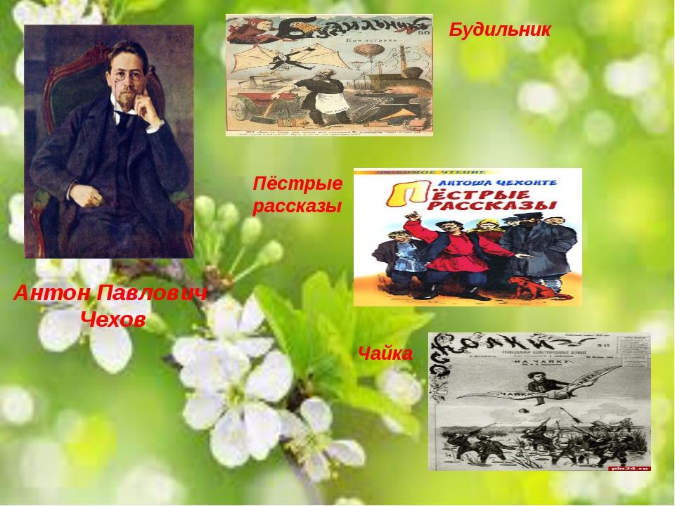 Антон Павлович Чехов Будильник Пёстрые рассказы Чайка