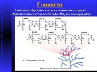 Гликоген Гликоген содержится во всех животных тканях. Особенно много его в пе