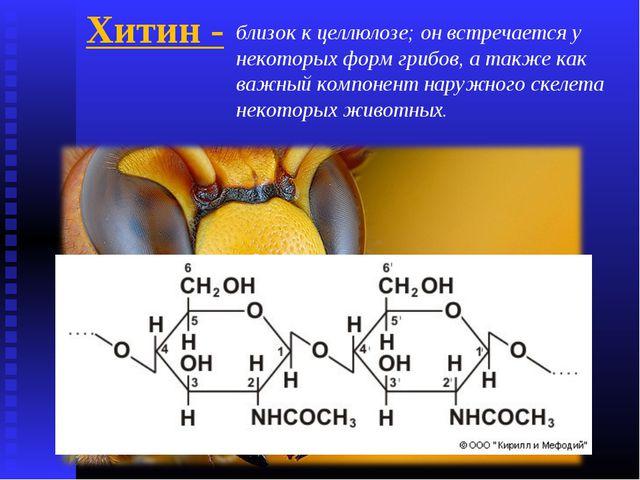 Хитин - близок к целлюлозе; он встречается у некоторых форм грибов, а также к...