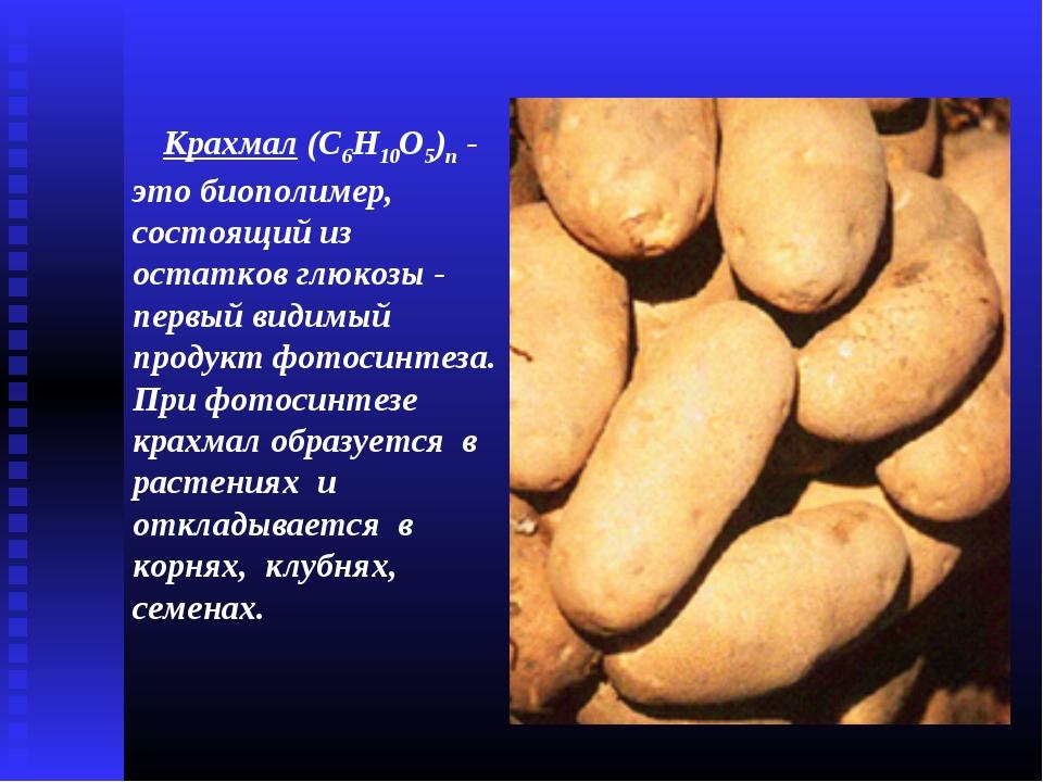 Крахмал (C6Н10О5)n - это биополимер, состоящий из остатков глюкозы - первый в...
