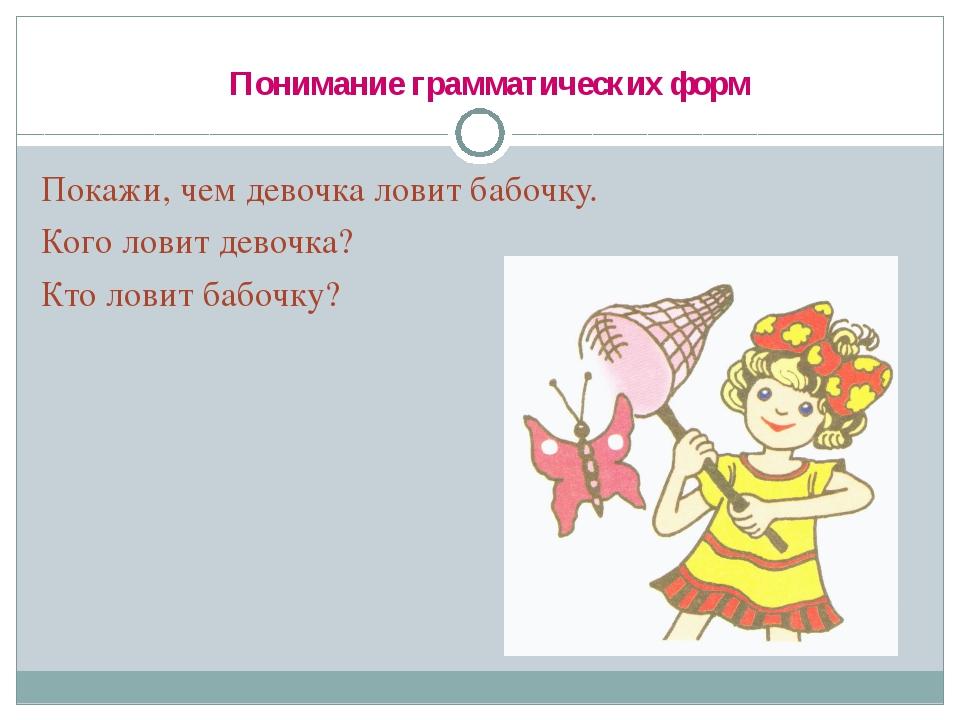 Понимание грамматических форм Покажи, чем девочка ловит бабочку. Кого ловит...