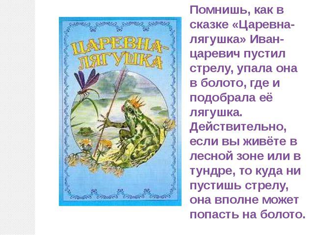 Помнишь, как в сказке «Царевна-лягушка» Иван-царевич пустил стрелу, упала она...