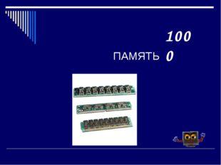 ПАМЯТЬ 1000