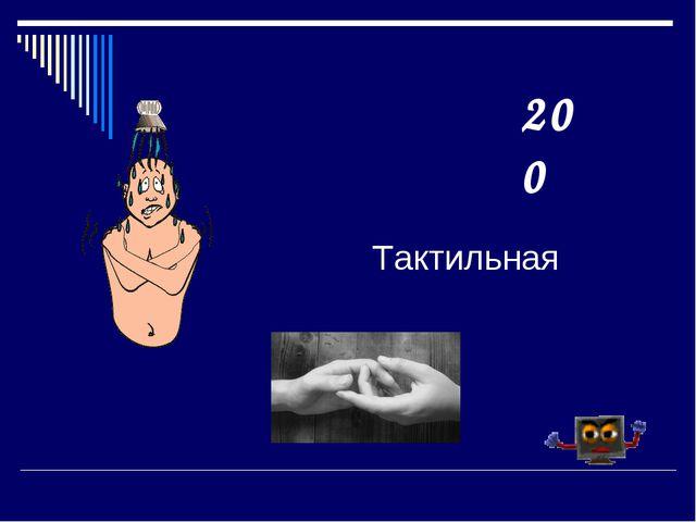 Тактильная 200