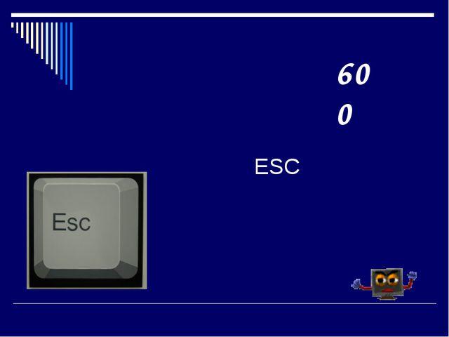 ESC 600