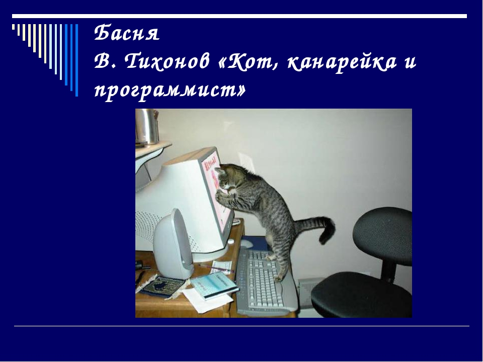 Басня В. Тихонов «Кот, канарейка и программист»