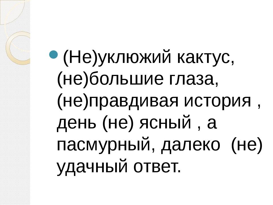 (Не)уклюжий кактус,(не)большие глаза,(не)правдивая история , день (не) ясный...