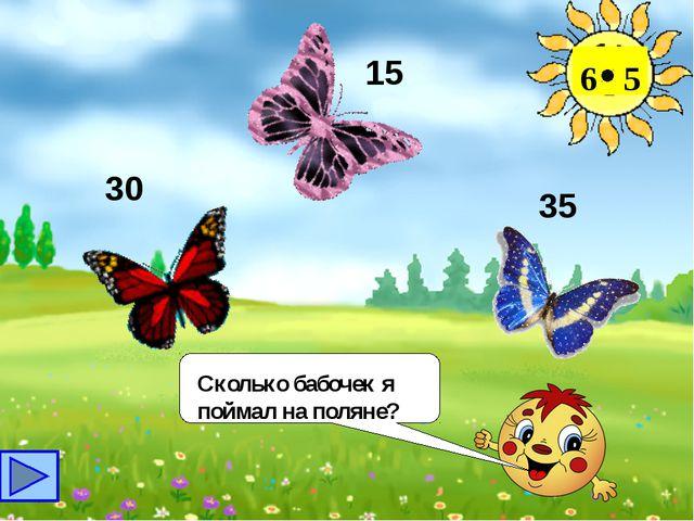 Сколько бабочек я поймал на поляне? 6 5 30 15 35