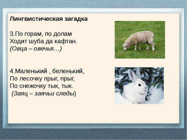Лингвистическая загадка 3.По горам, по долам Ходит шуба да кафтан. (Овца – ов...