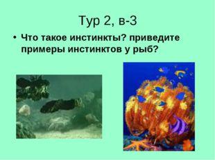 Тур 2, в-3 Что такое инстинкты? приведите примеры инстинктов у рыб?