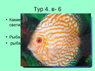 Тур 4. в- 6 Какие рыбы носят названия небесных светил? Рыба- луна, рыба солнце