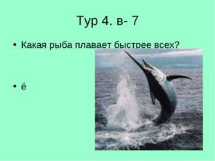 Тур 4. в- 7 Какая рыба плавает быстрее всех? ё