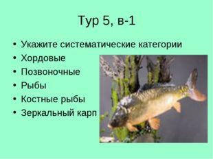 Тур 5, в-1 Укажите систематические категории Хордовые Позвоночные Рыбы Костны