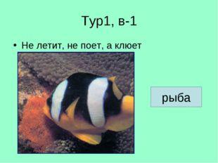 Тур1, в-1 Не летит, не поет, а клюет рыба