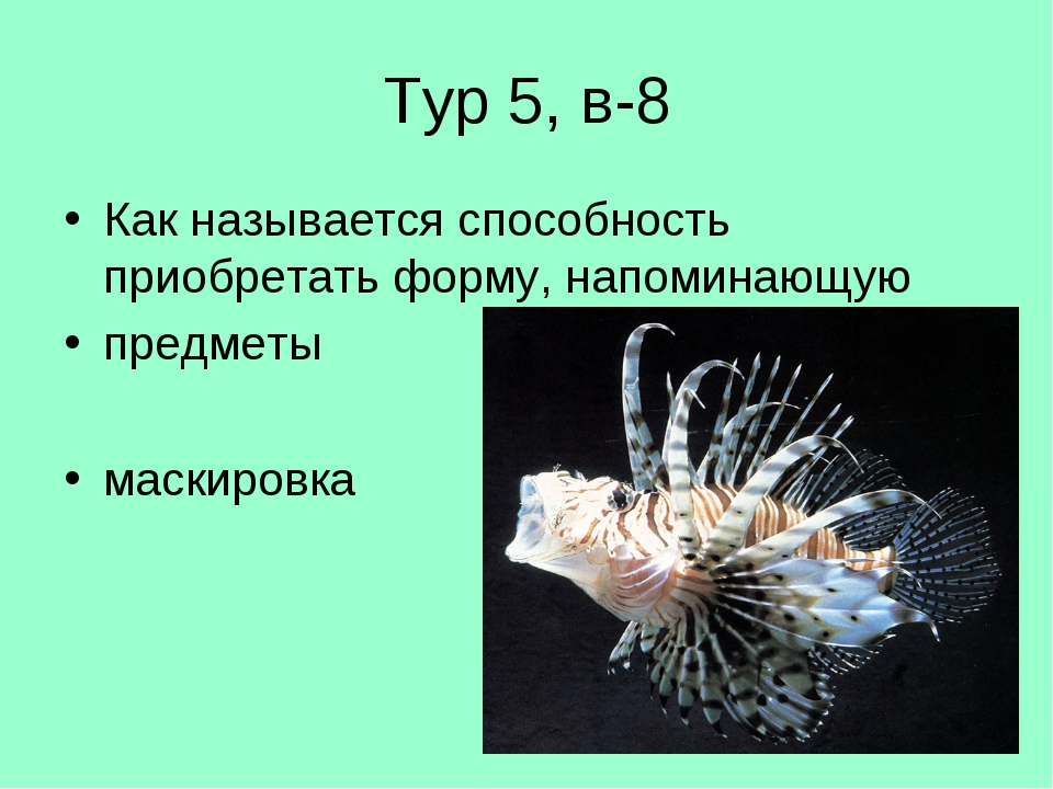 Тур 5, в-8 Как называется способность приобретать форму, напоминающую предмет...